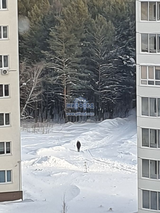 Продам 1-комн. квартиру по адресу Россия, Кемеровская область, Кемерово, ул. Серебряный бор,4 фото 15 по выгодной цене