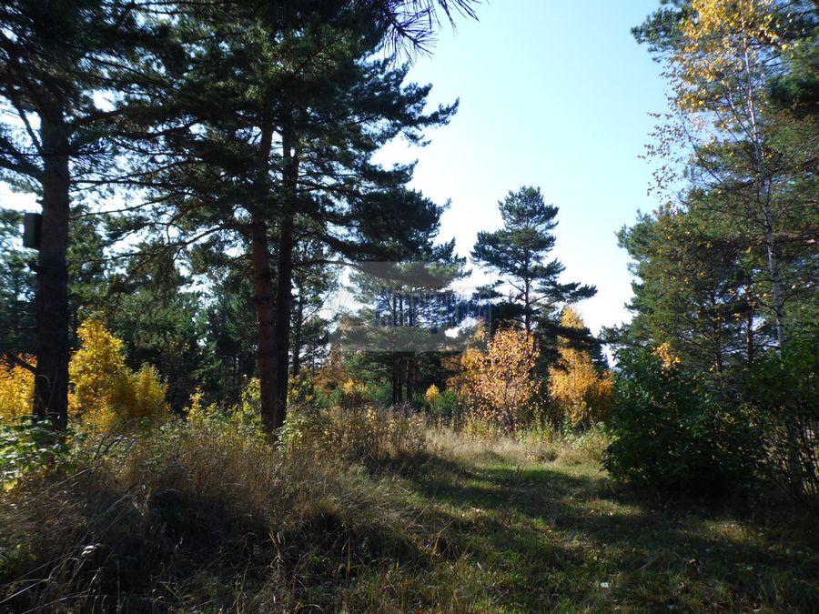 Продам дом с участком по адресу Россия, Кемеровская область, Березовский, пер. Таежный фото 21 по выгодной цене
