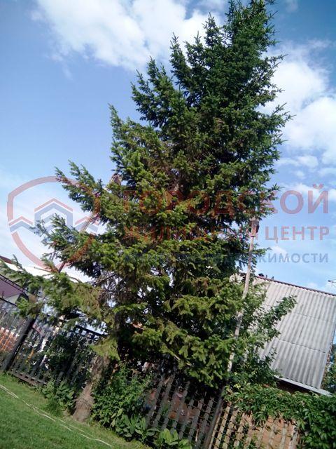 Продам дом с участком по адресу Россия, Новосибирская область, Новосибирский, Криводановка, бареговая фото 12 по выгодной цене