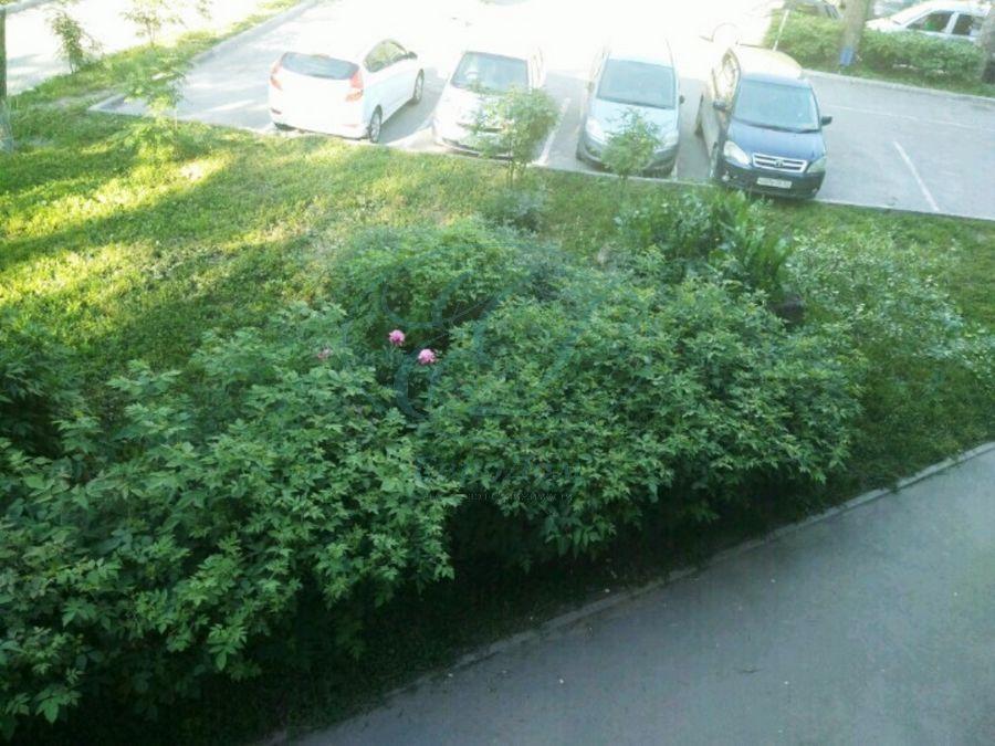 Продам 1-комн. квартиру по адресу Россия, Новосибирская область, Новосибирск, ул. Адриена Лежена,8 фото 11 по выгодной цене