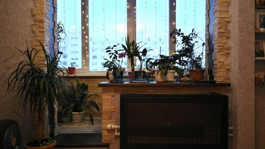 Продам 2-комн. квартиру по адресу Россия, Новосибирская область, Новосибирск, ул. Титова,236/2 фото 1 по выгодной цене