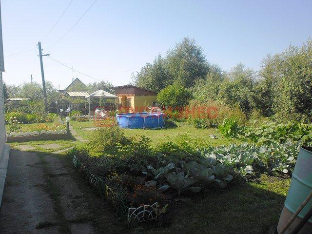 Продам дача по адресу Россия, Новосибирская область, Бердск фото 6 по выгодной цене