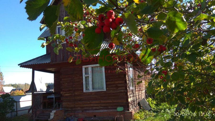 Продам дача по адресу Россия, Новосибирская область, Новосибирский, Издревая фото 0 по выгодной цене